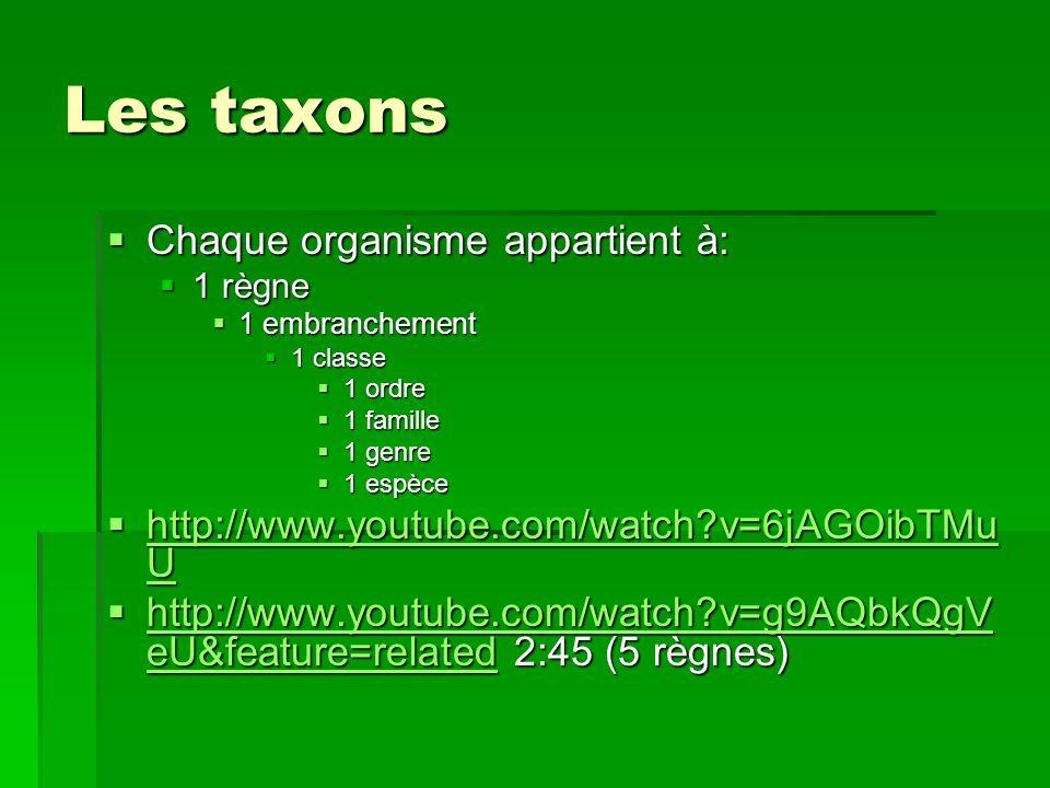 Les taxons Chaque organisme appartient à: