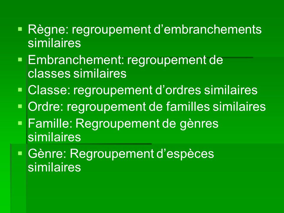 Règne: regroupement d'embranchements similaires