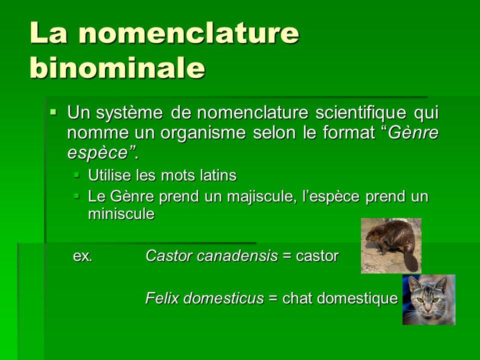 La nomenclature binominale