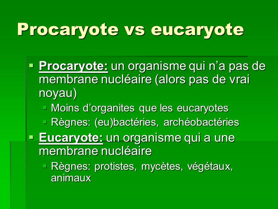 Procaryote vs eucaryote