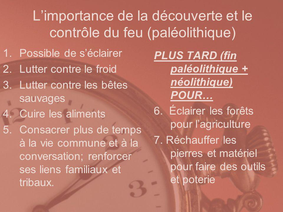 L'importance de la découverte et le contrôle du feu (paléolithique)