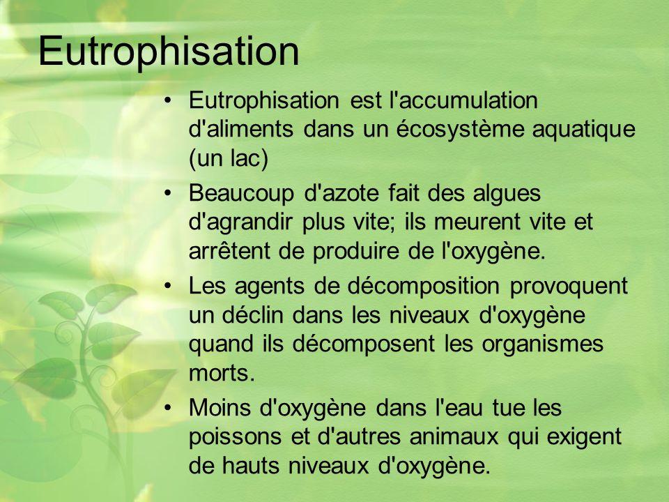Eutrophisation Eutrophisation est l accumulation d aliments dans un écosystème aquatique (un lac)