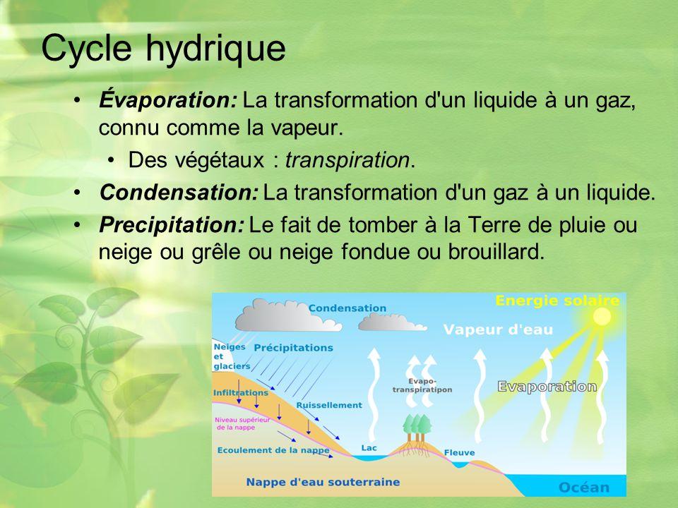 Cycle hydrique Évaporation: La transformation d un liquide à un gaz, connu comme la vapeur. Des végétaux : transpiration.