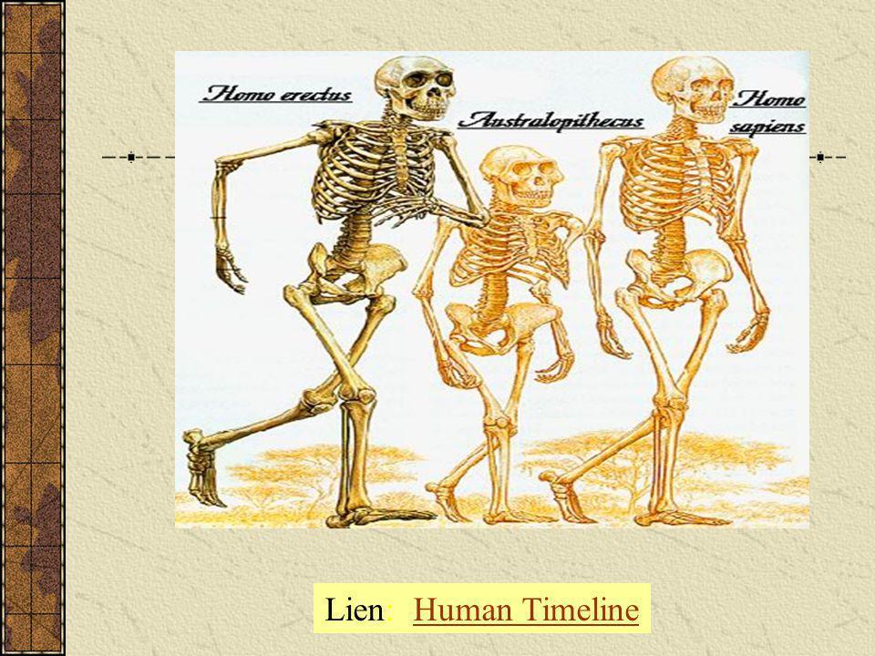 Lien: Human Timeline