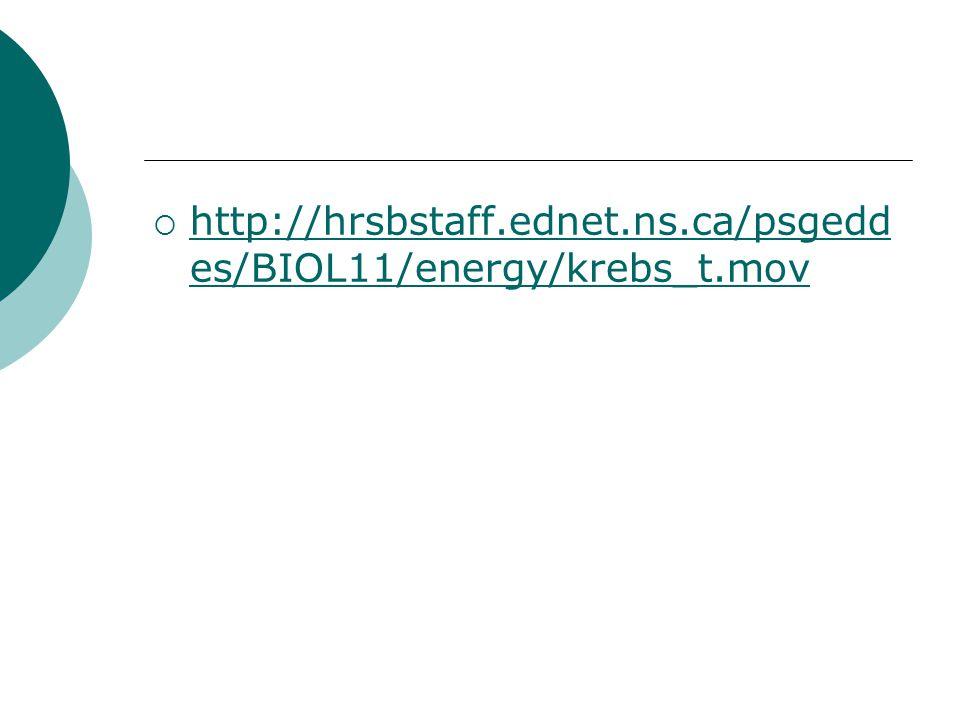 http://hrsbstaff.ednet.ns.ca/psgeddes/BIOL11/energy/krebs_t.mov