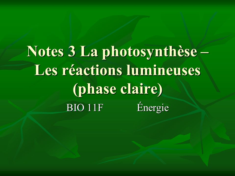 Notes 3 La photosynthèse – Les réactions lumineuses (phase claire)
