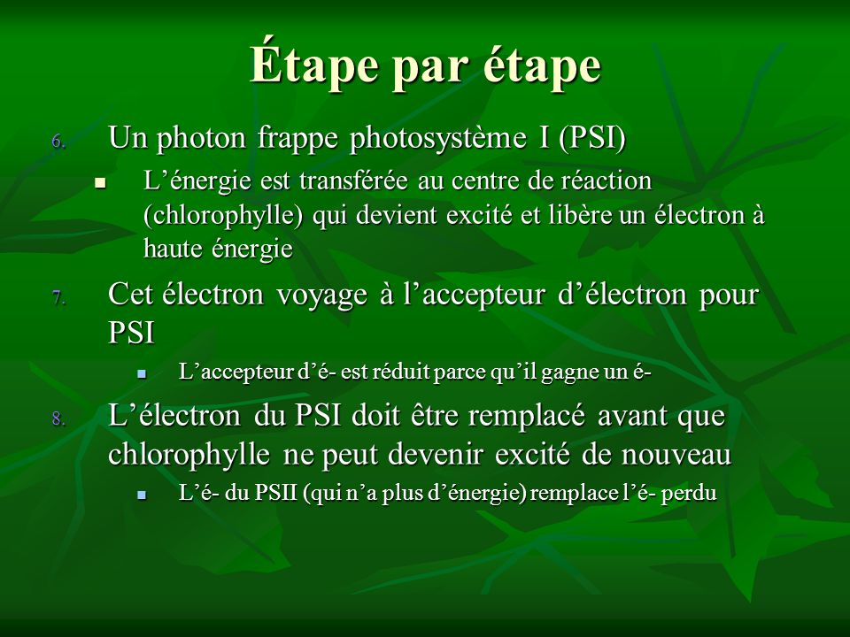 Étape par étape Un photon frappe photosystème I (PSI)