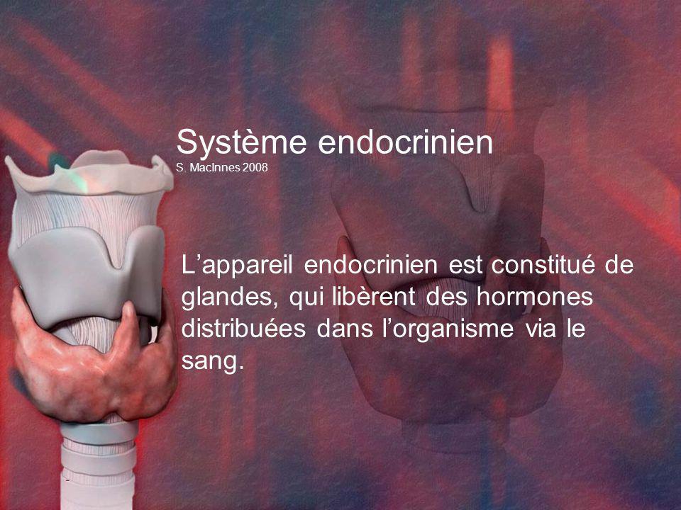 Système endocrinien S. MacInnes 2008