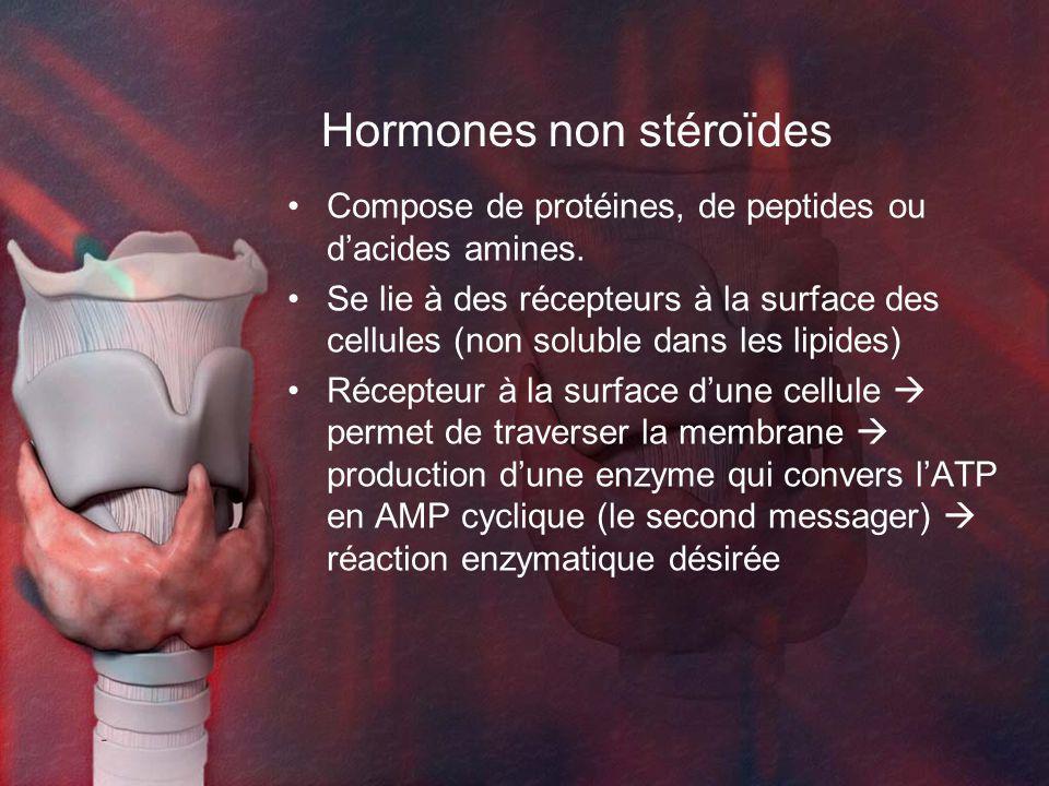 Hormones non stéroïdes