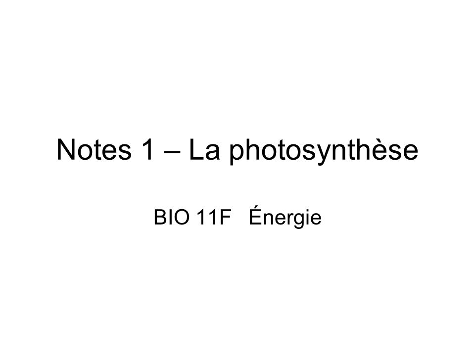 Notes 1 – La photosynthèse