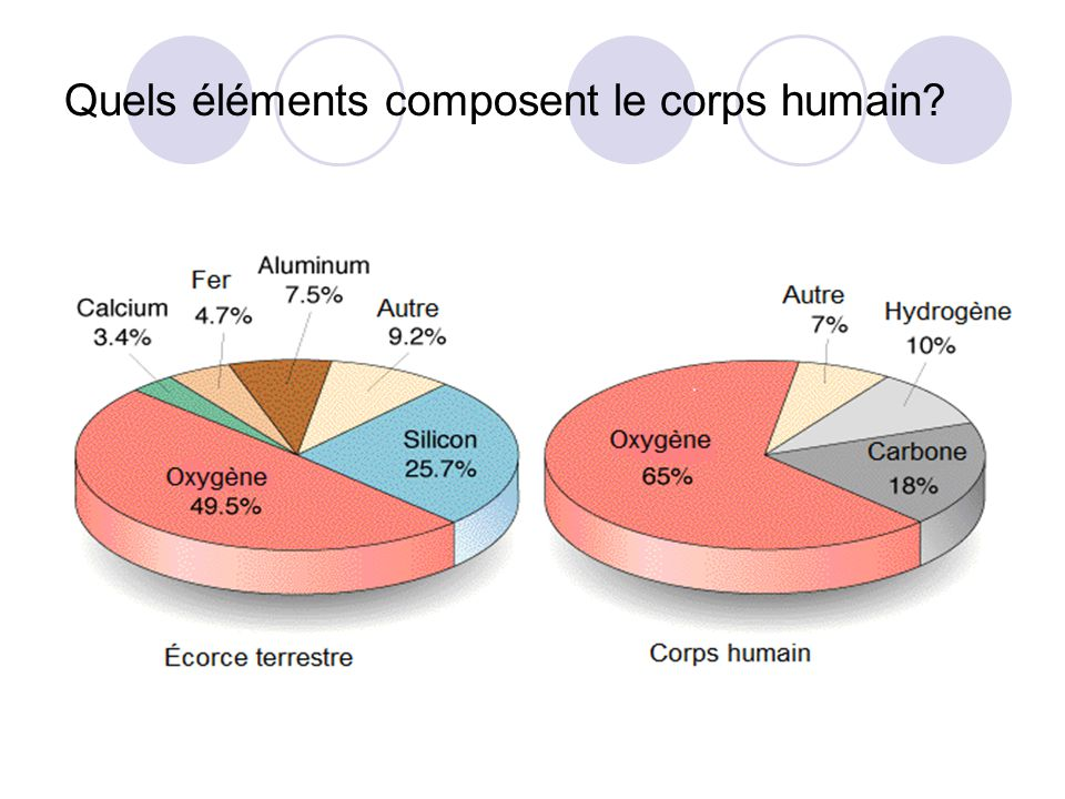 Quels éléments composent le corps humain