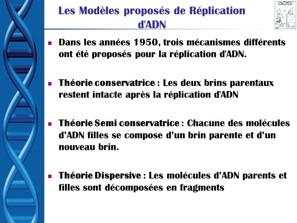 Les Modèles proposés de Réplication d ADN