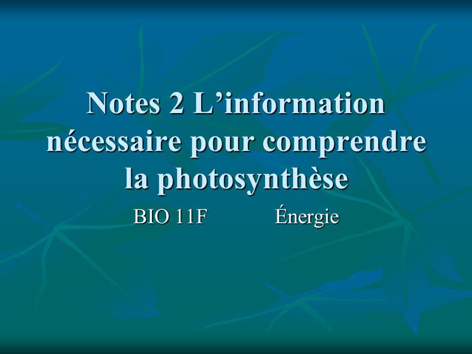 Notes 2 L'information nécessaire pour comprendre la photosynthèse