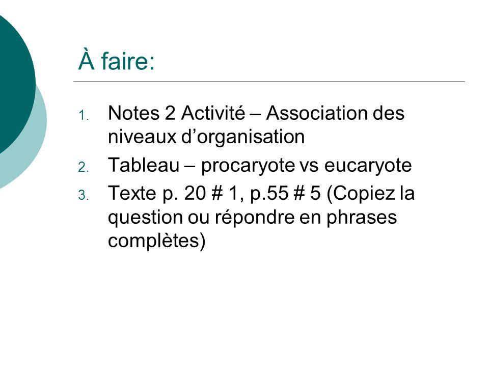 À faire: Notes 2 Activité – Association des niveaux d'organisation