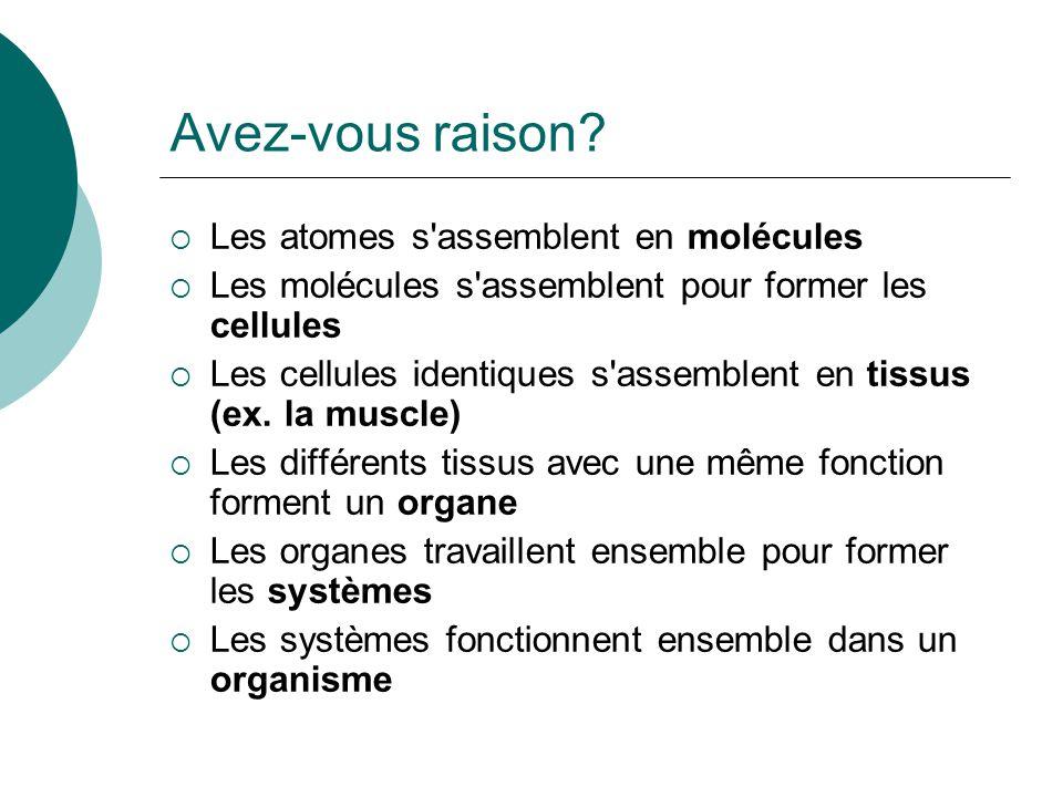 Avez-vous raison Les atomes s assemblent en molécules