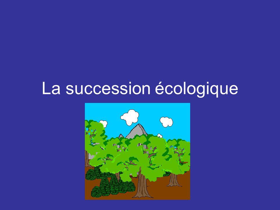 La succession écologique
