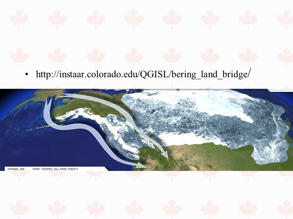 http://instaar.colorado.edu/QGISL/bering_land_bridge/