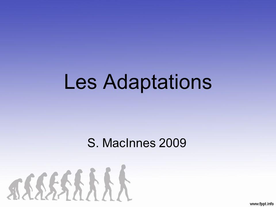 Les Adaptations S. MacInnes 2009