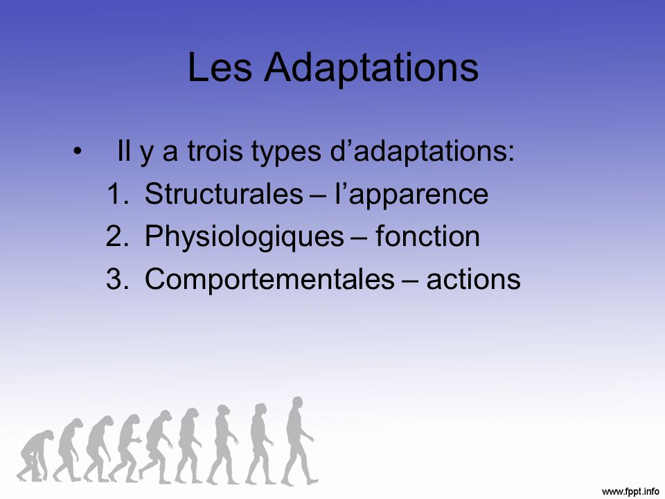 Les Adaptations Il y a trois types d'adaptations:
