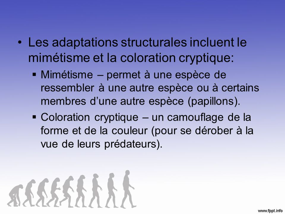 Les adaptations structurales incluent le mimétisme et la coloration cryptique: