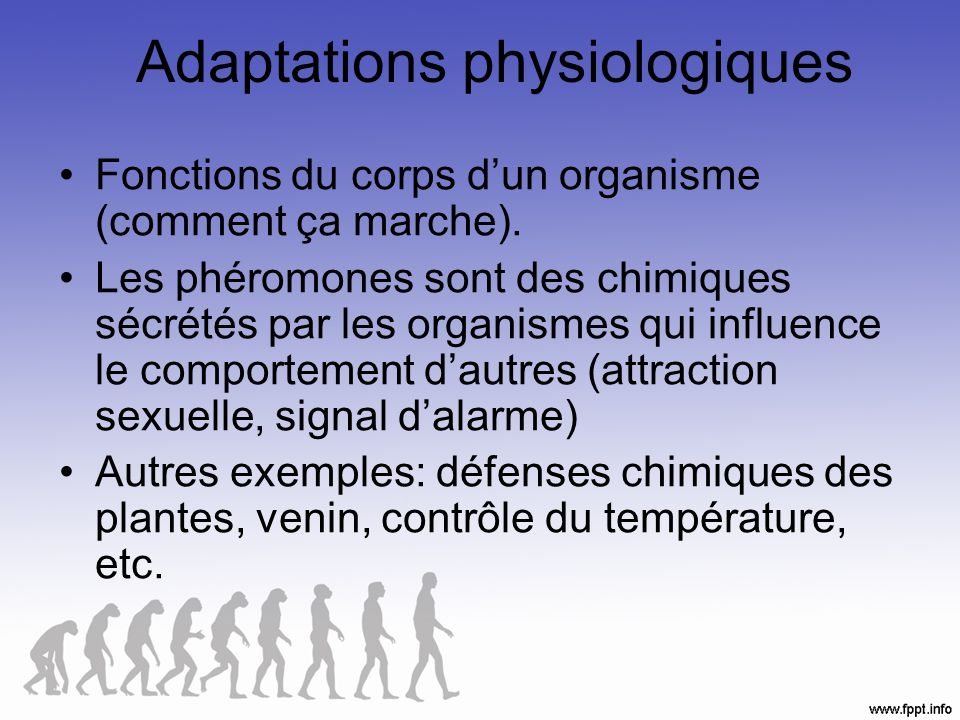 Adaptations physiologiques