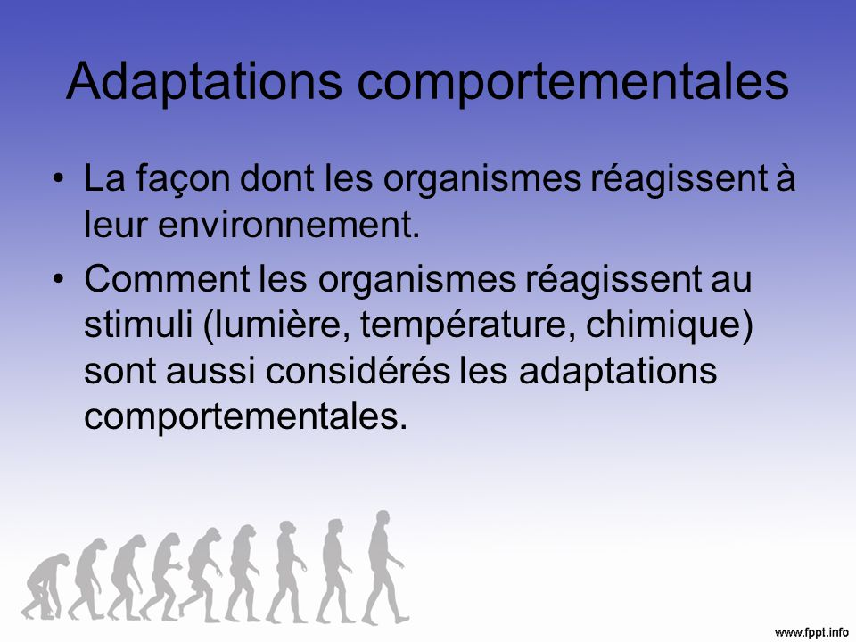 Adaptations comportementales