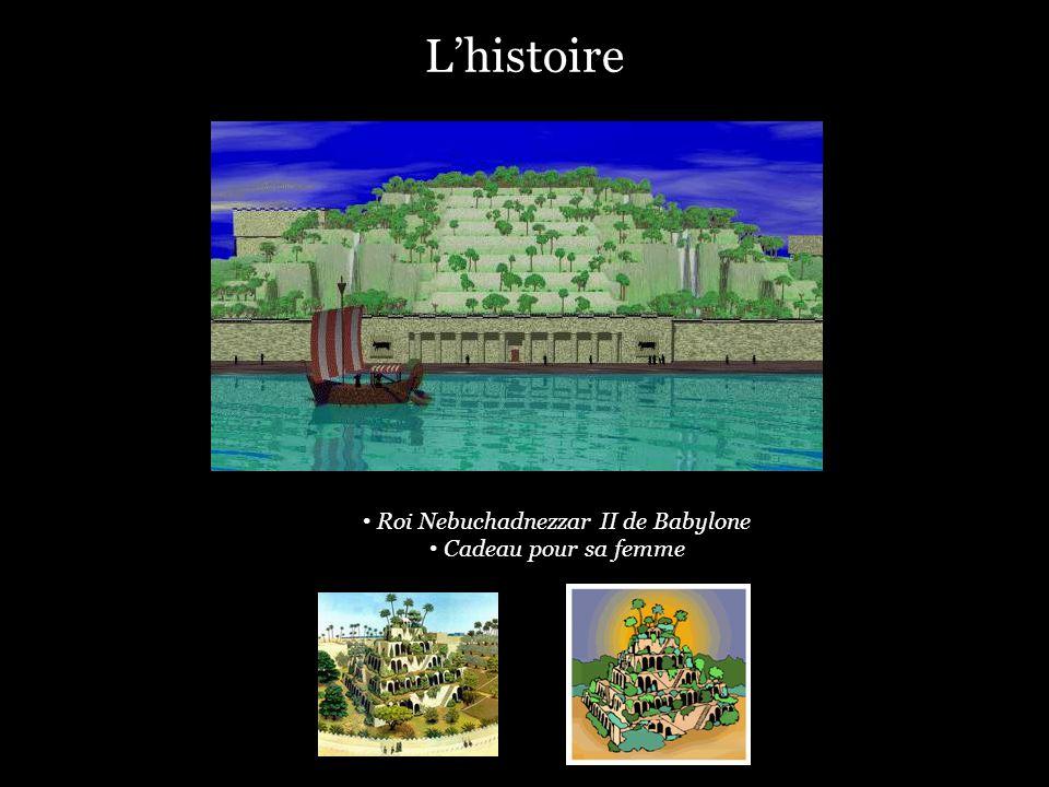 Roi Nebuchadnezzar II de Babylone