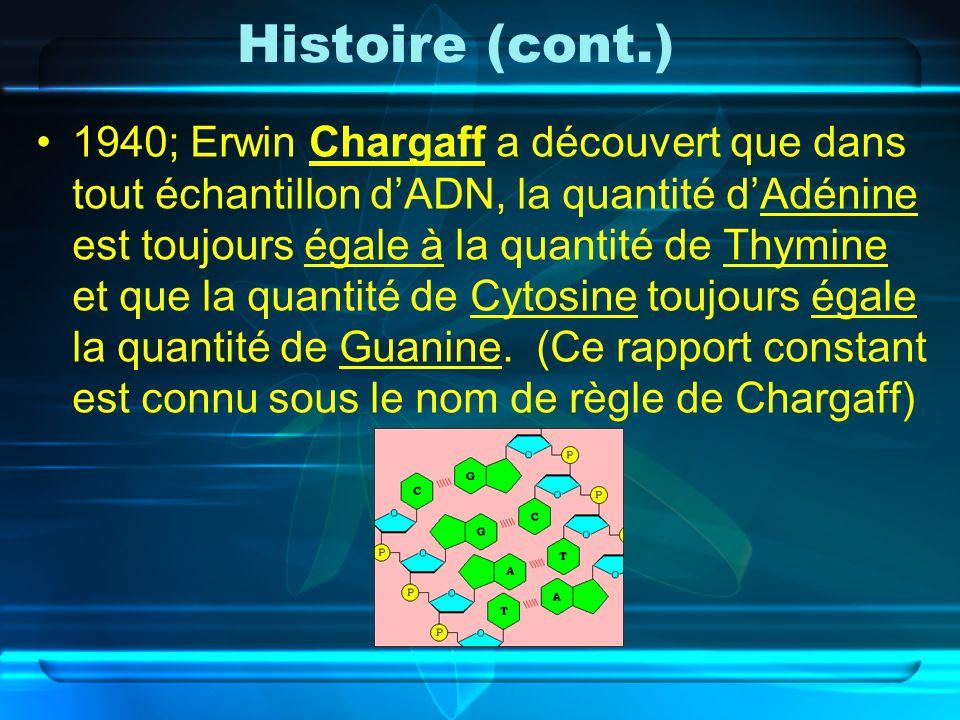 Histoire (cont.)