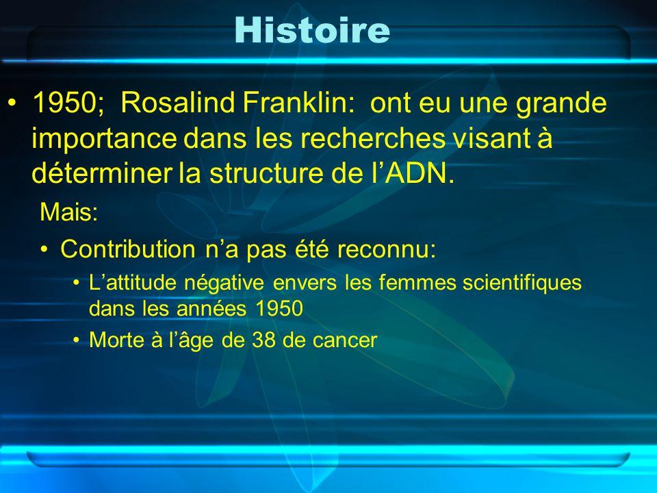 Histoire 1950; Rosalind Franklin: ont eu une grande importance dans les recherches visant à déterminer la structure de l'ADN.