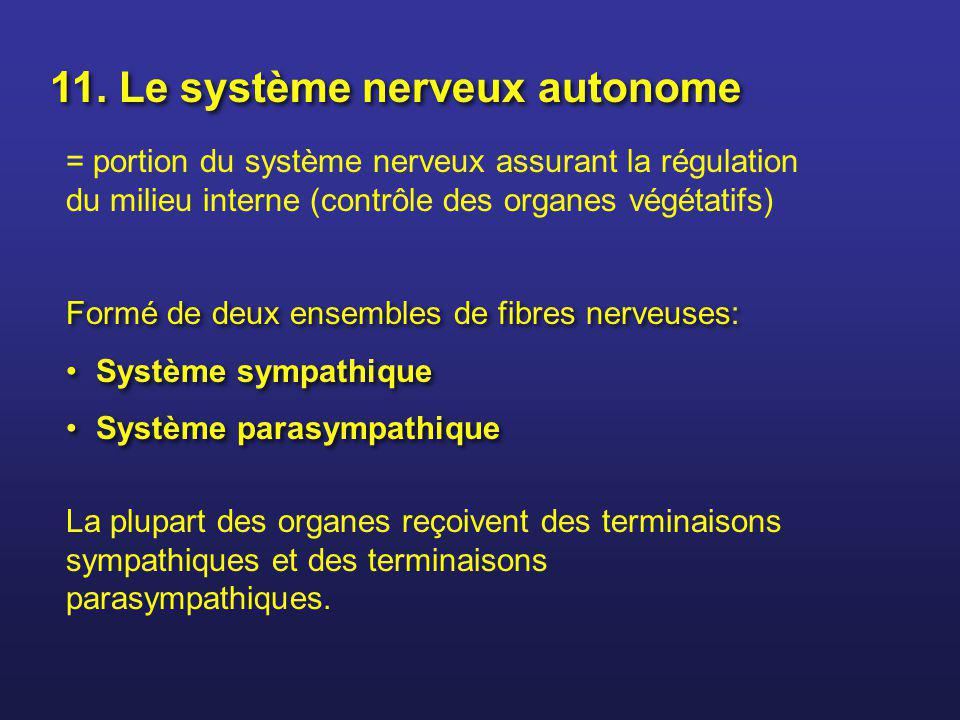 11. Le système nerveux autonome