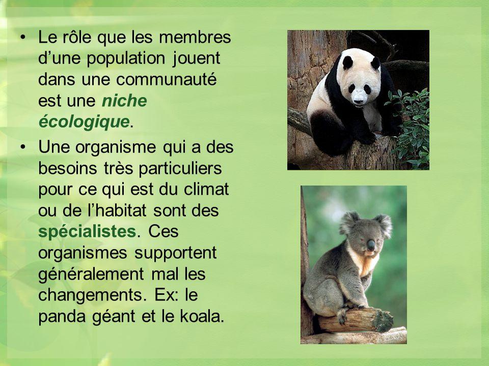 Le rôle que les membres d'une population jouent dans une communauté est une niche écologique.