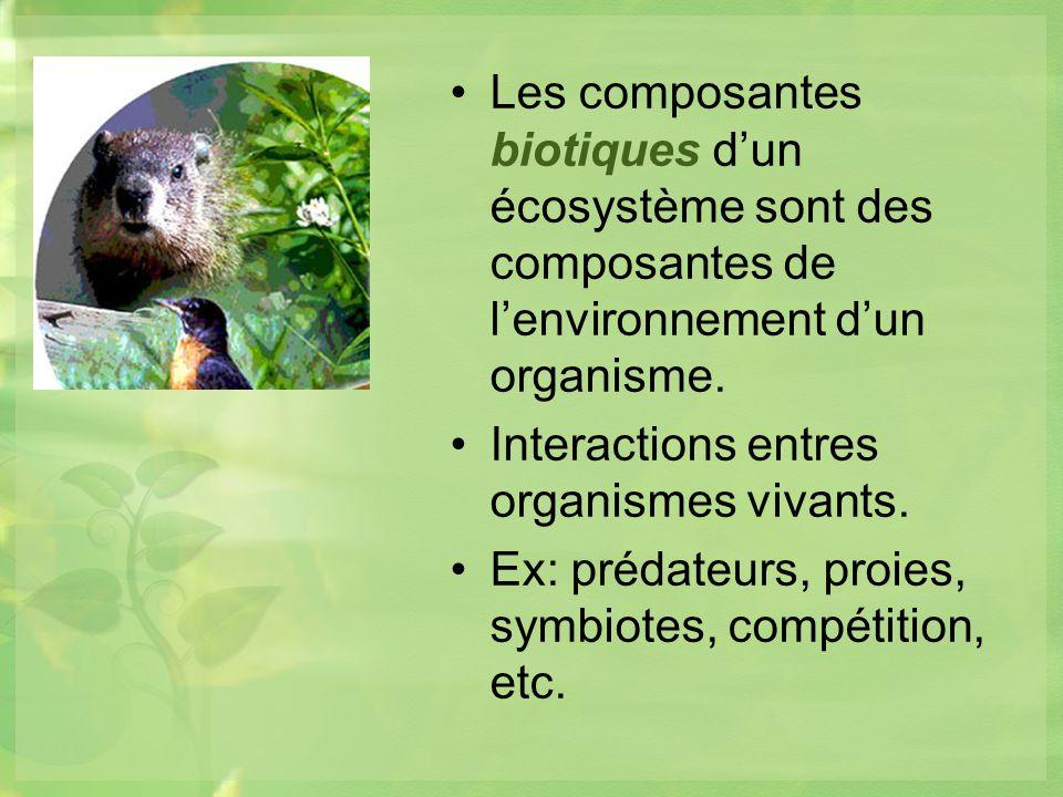Les composantes biotiques d'un écosystème sont des composantes de l'environnement d'un organisme.