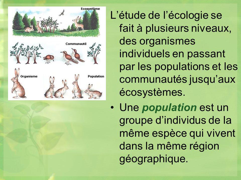 L'étude de l'écologie se fait à plusieurs niveaux, des organismes individuels en passant par les populations et les communautés jusqu'aux écosystèmes.