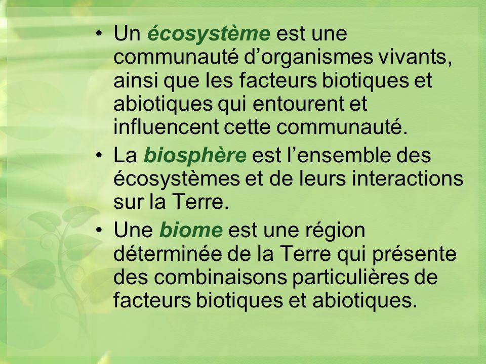 Un écosystème est une communauté d'organismes vivants, ainsi que les facteurs biotiques et abiotiques qui entourent et influencent cette communauté.