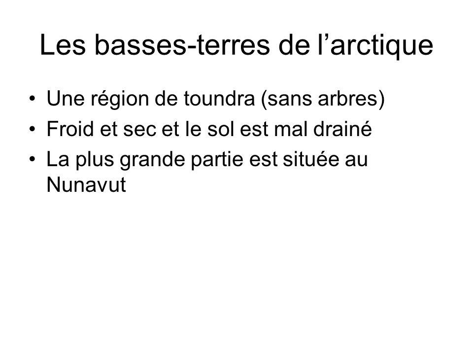 Les basses-terres de l'arctique