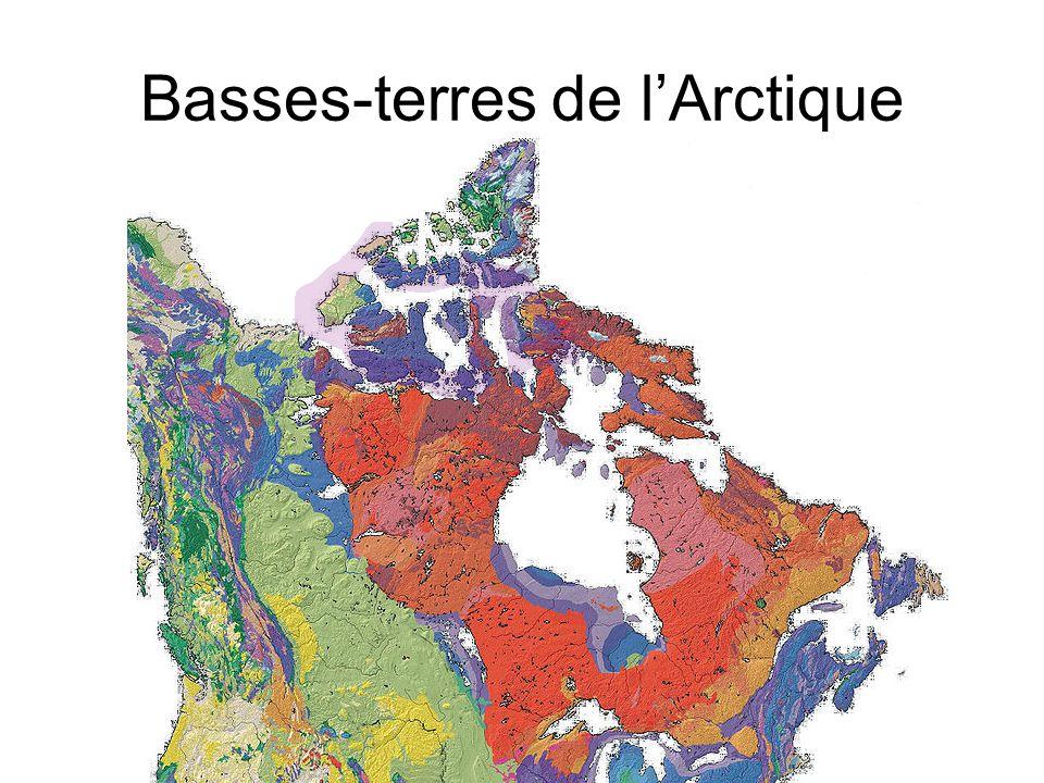 Basses-terres de l'Arctique