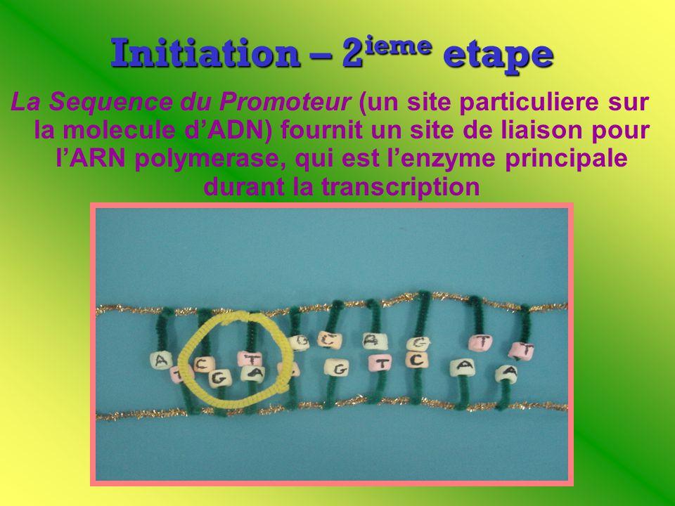 Initiation – 2ieme etape