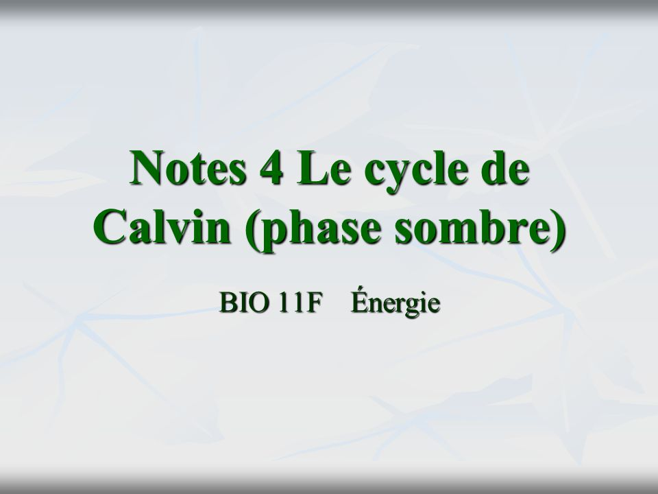 Notes 4 Le cycle de Calvin (phase sombre)