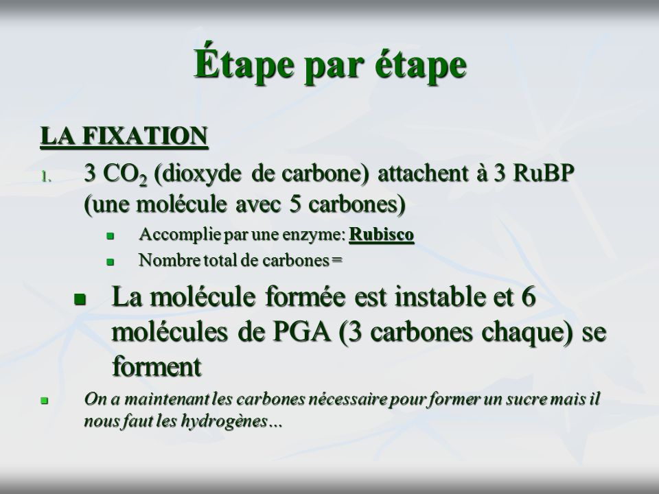 Étape par étape LA FIXATION. 3 CO2 (dioxyde de carbone) attachent à 3 RuBP (une molécule avec 5 carbones)