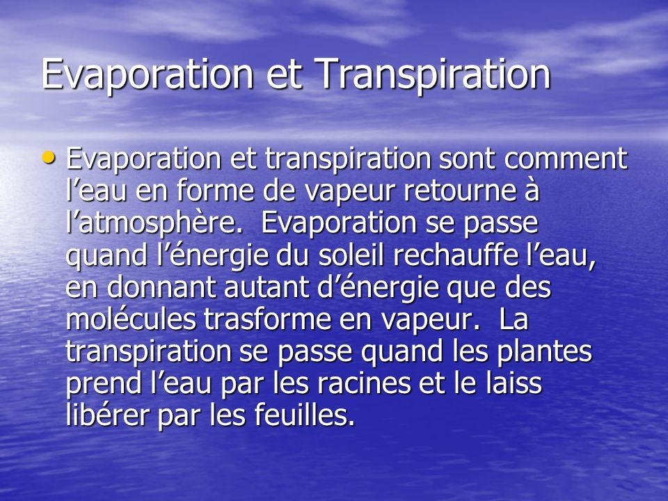 Evaporation et Transpiration