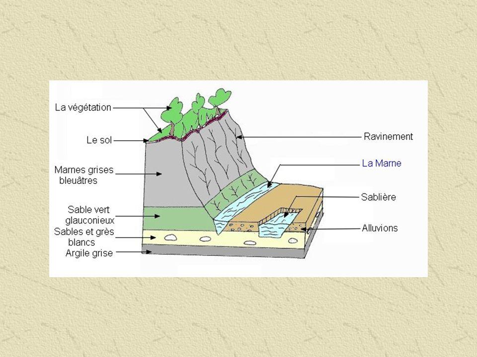 Croquis du paysage et schéma stratigraphique des Côtes Noires NB : Si l on revient par la sablière, on peut trouver des sables vert glauconieux (avec des restes de bois fossile) datant de l Albien inférieur et des sables jaunes de l Aptien (ce sont ceux qui sont exploités par la fabrique de béton).