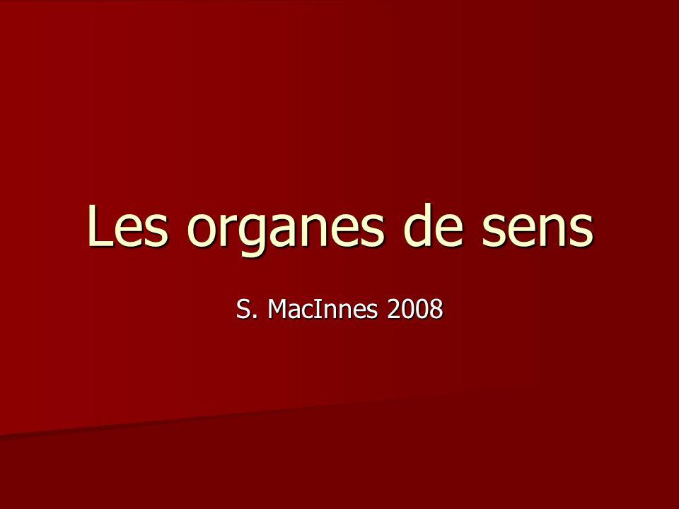 Les organes de sens S. MacInnes 2008