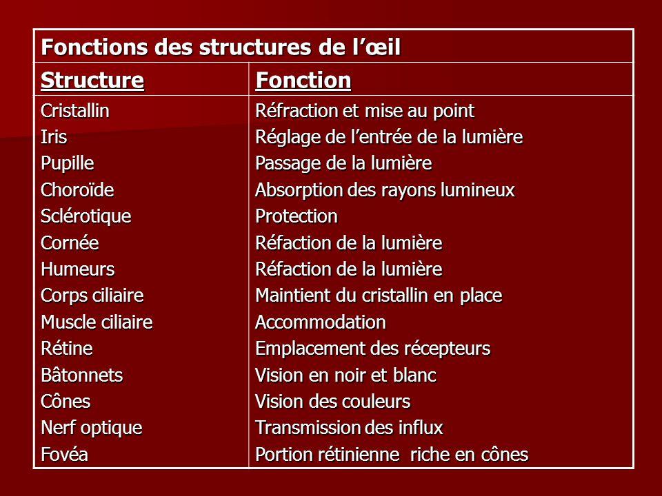 Fonctions des structures de l'œil Structure Fonction