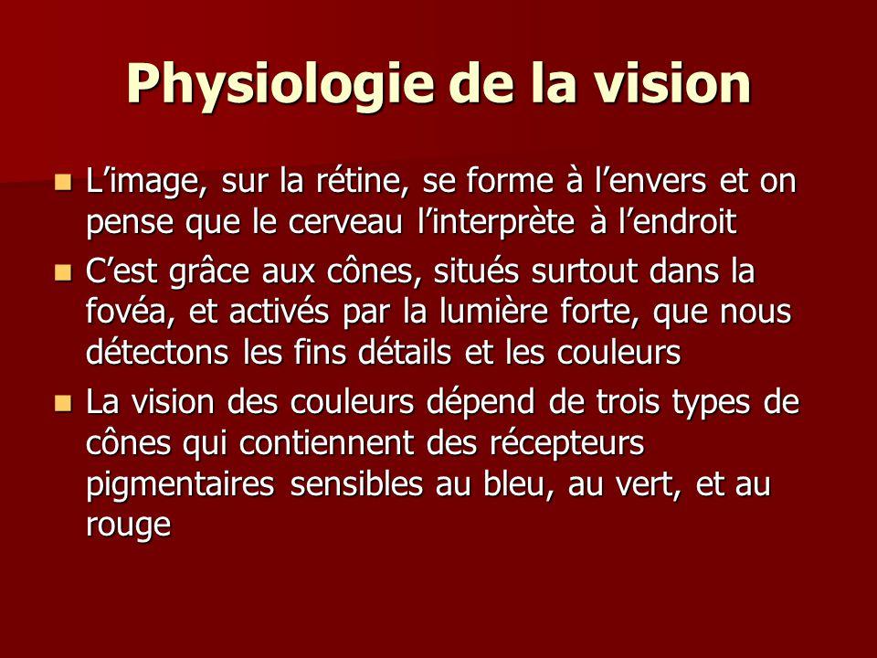 Physiologie de la vision
