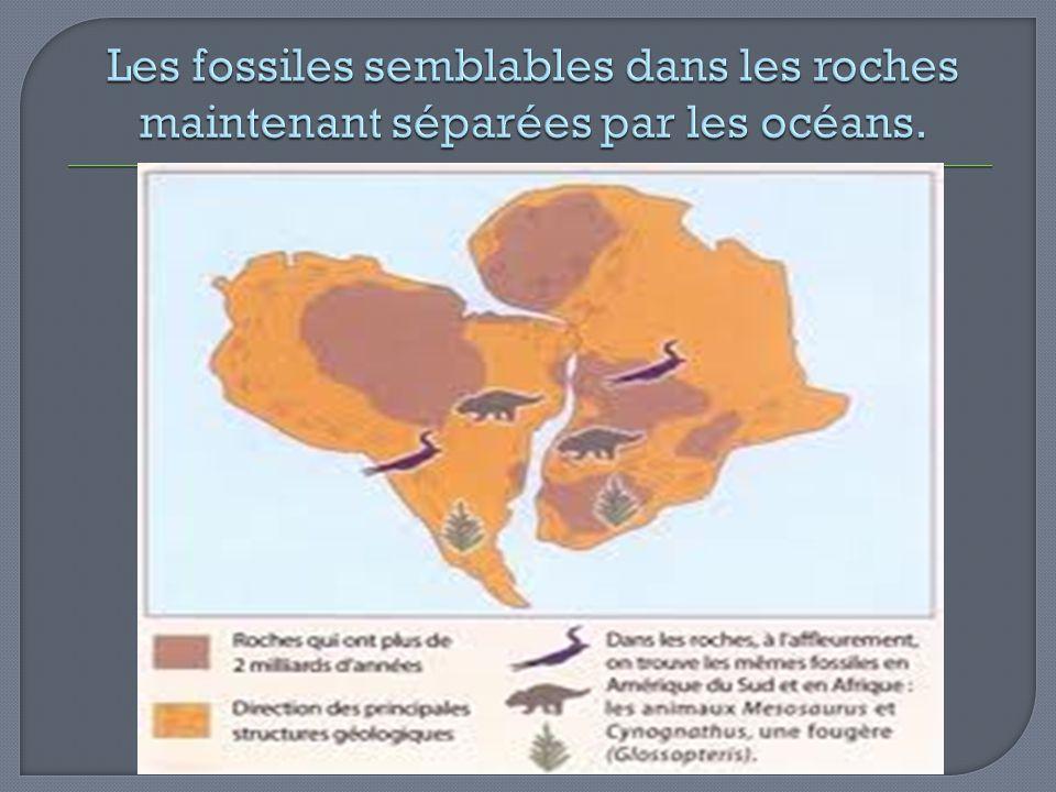 Les fossiles semblables dans les roches maintenant séparées par les océans.