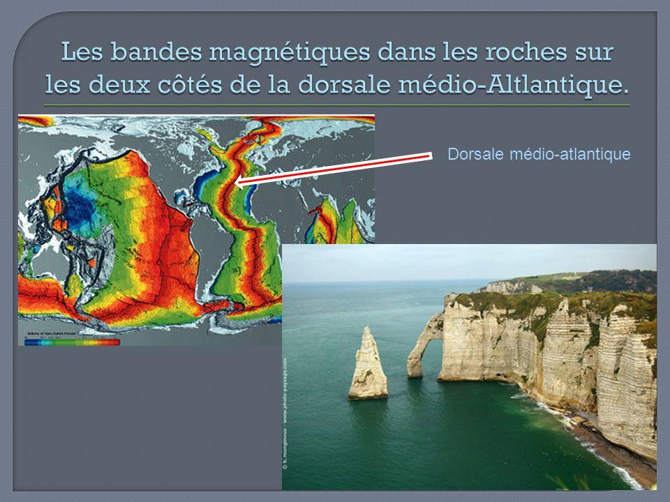 Les bandes magnétiques dans les roches sur les deux côtés de la dorsale médio-Altlantique.