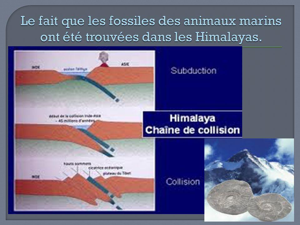Le fait que les fossiles des animaux marins ont été trouvées dans les Himalayas.