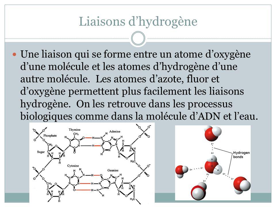 Liaisons d'hydrogène