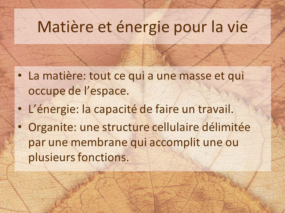 Matière et énergie pour la vie