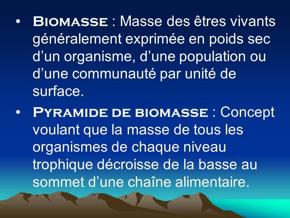 Biomasse : Masse des êtres vivants généralement exprimée en poids sec d'un organisme, d'une population ou d'une communauté par unité de surface.
